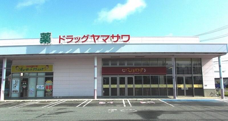 ドラッグヤマザワ川西店